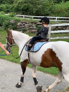 Expert Riding Lessons for all ages and abilities